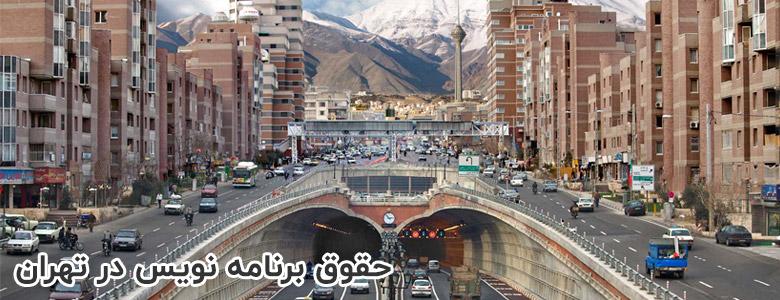 حقوق برنامه نویس در شهر تهران