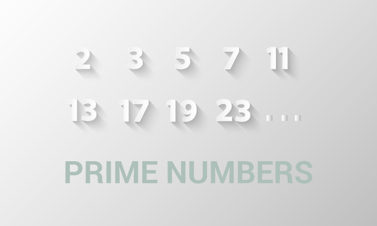 prime numbers جملات شرطی در برنامه جذاب و جالب و خوب نویسی C